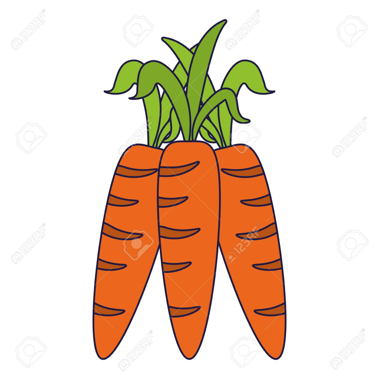 Carrots Vegetables Fruit Cartoon Vector Illustration Graphic Royalty Free Cliparts Vectors And Stock Illustration Image 124960417