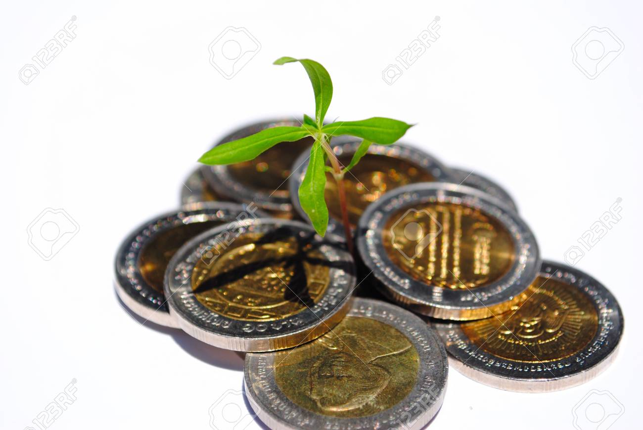 Protecting a good investment and making money concept - businessman hands with plant sprouting from a pile of coins Stock Photo - 10546235