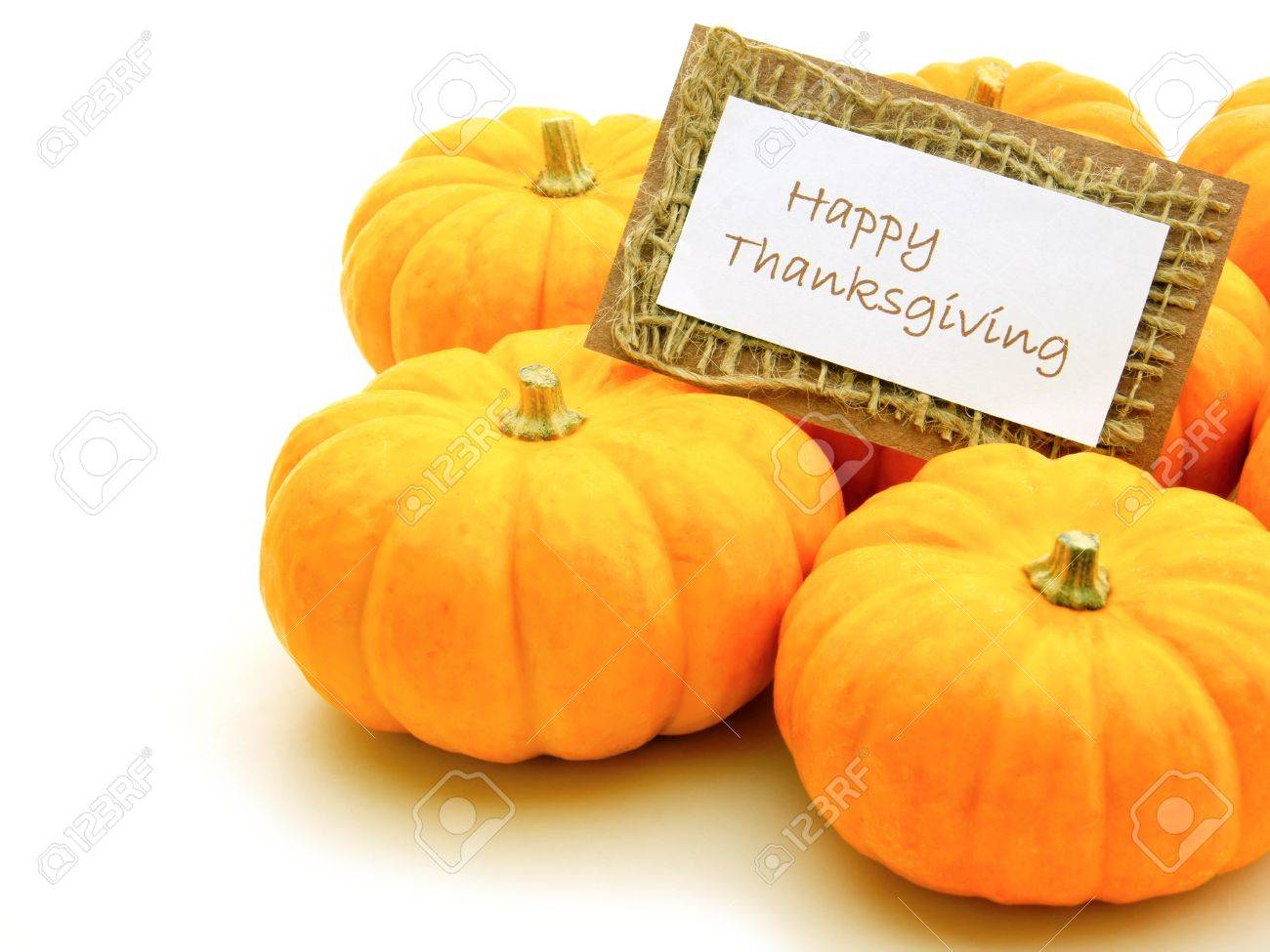 Group of pumpkins with Happy Thanksgiving card over white Stock Photo - 15460342