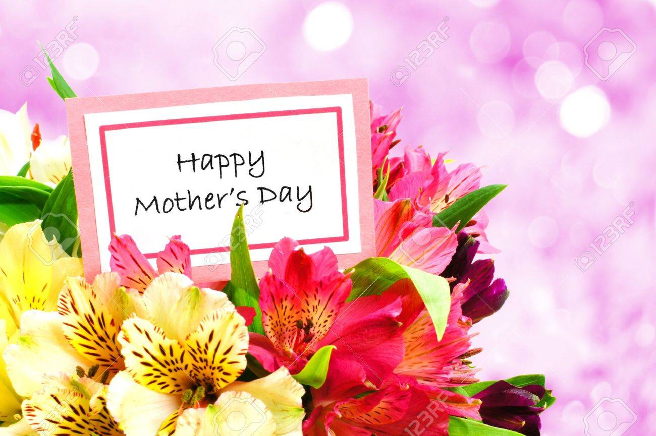 happy mothers day tag among a bouquet of flowers with twinkling, Natural flower