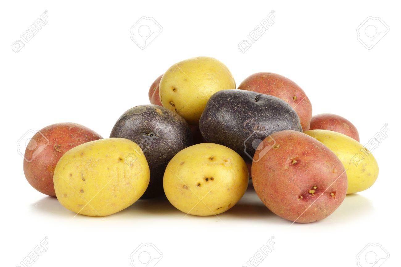 Pile of colorful fresh little potatoes over a white background - 54798383
