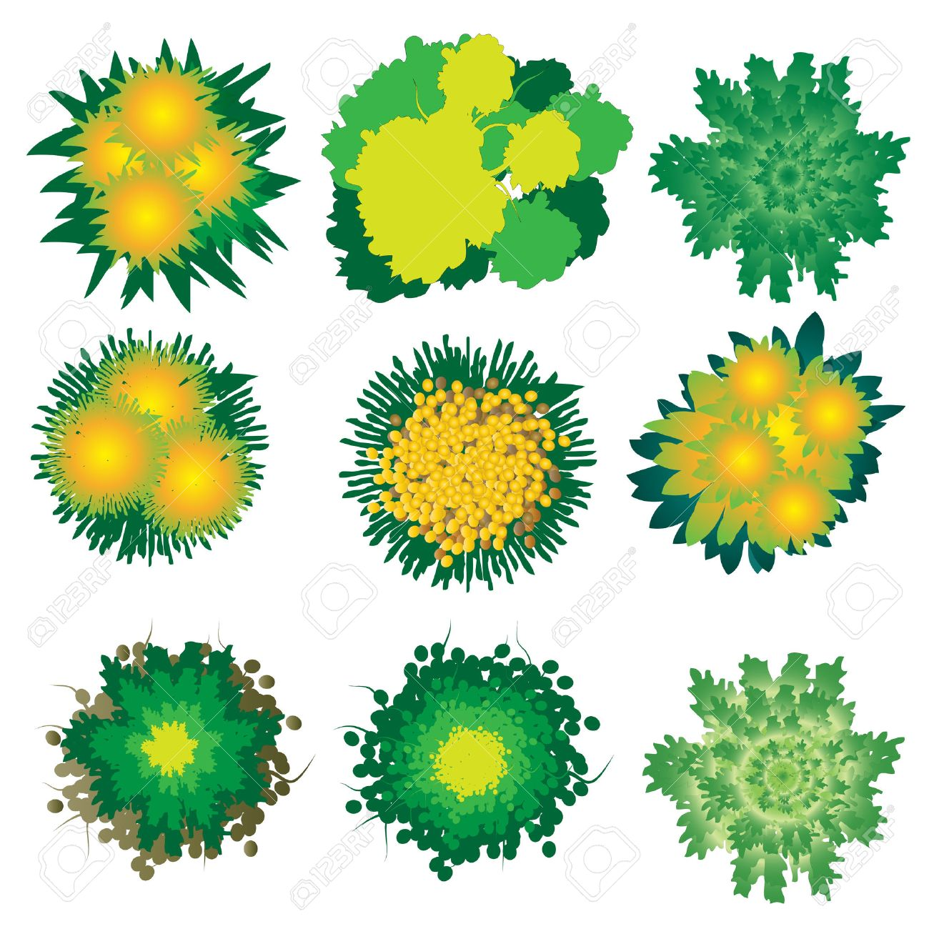 Plant top view vector in group download free vector art stock - Birds Eye View Plants And Trees Top View Set 4 For Landscape Design Vector