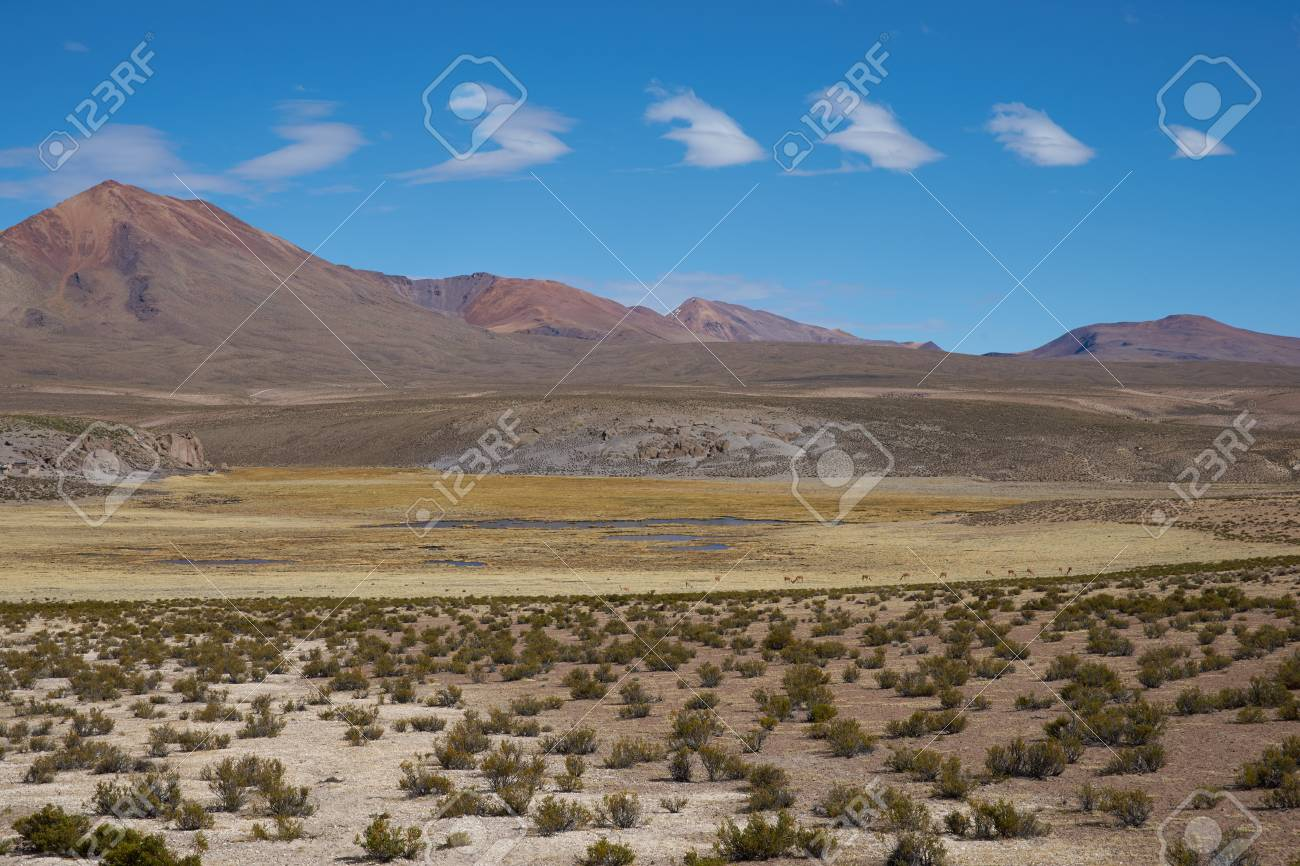 large open plain high up in the altiplano of northern chile stock
