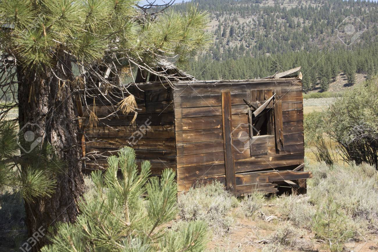 an abandoned western barn in the high sierras Stock Photo - 14569900
