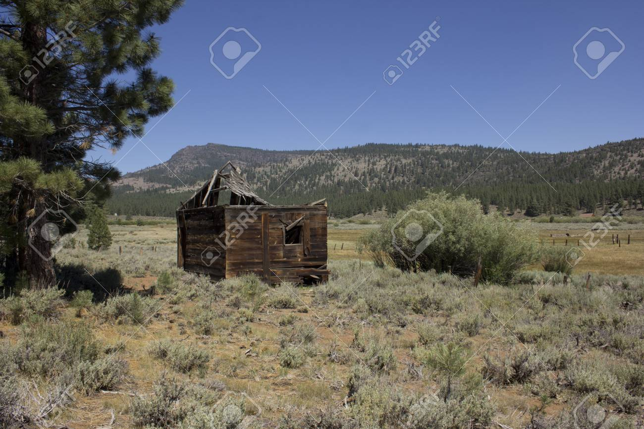 an abandoned western barn in the high sierras Stock Photo - 14570007