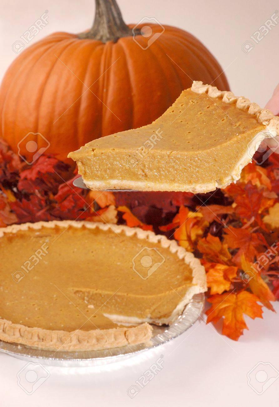 Autumn Dessert Slice Stock Photo - 5536948
