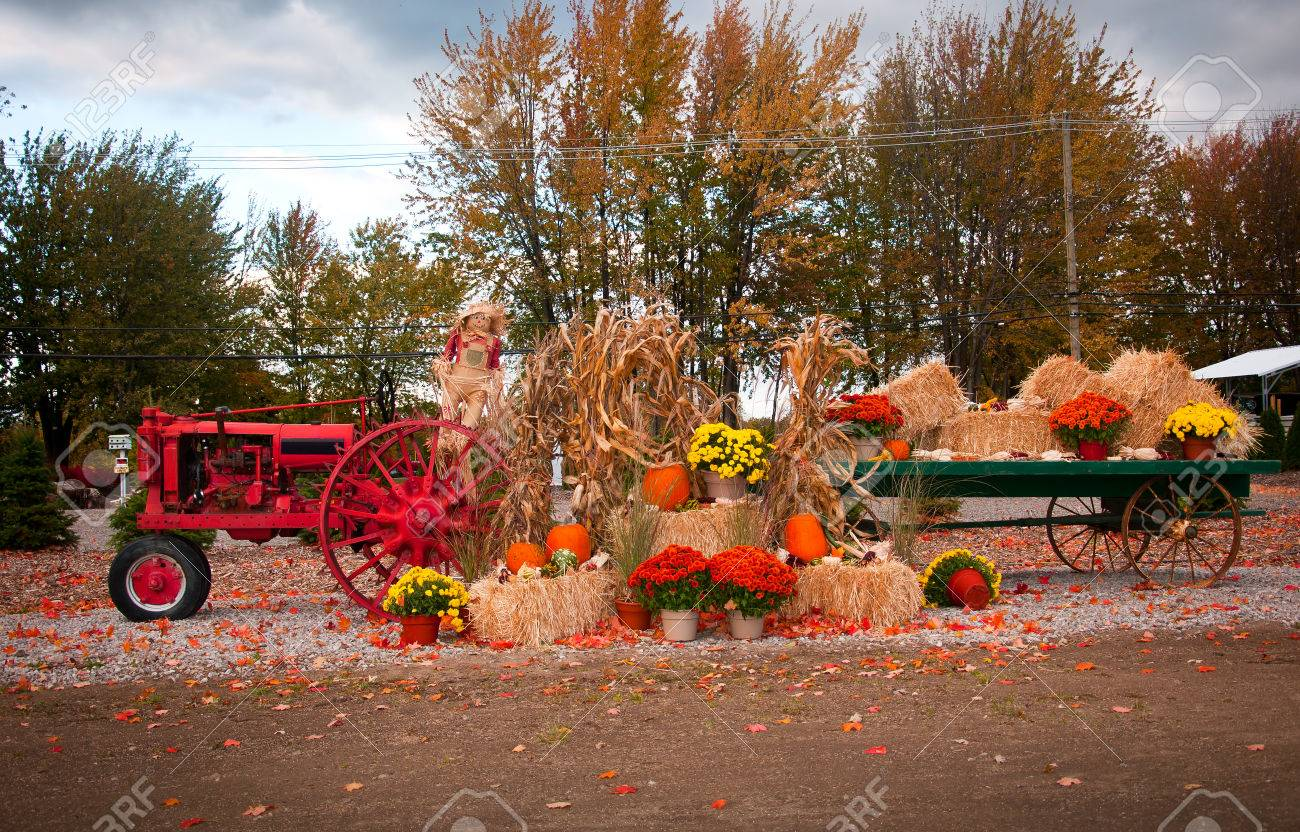 old tractor as fall harvest decor in yard stock photo 32842359 - Fall Harvest Decor