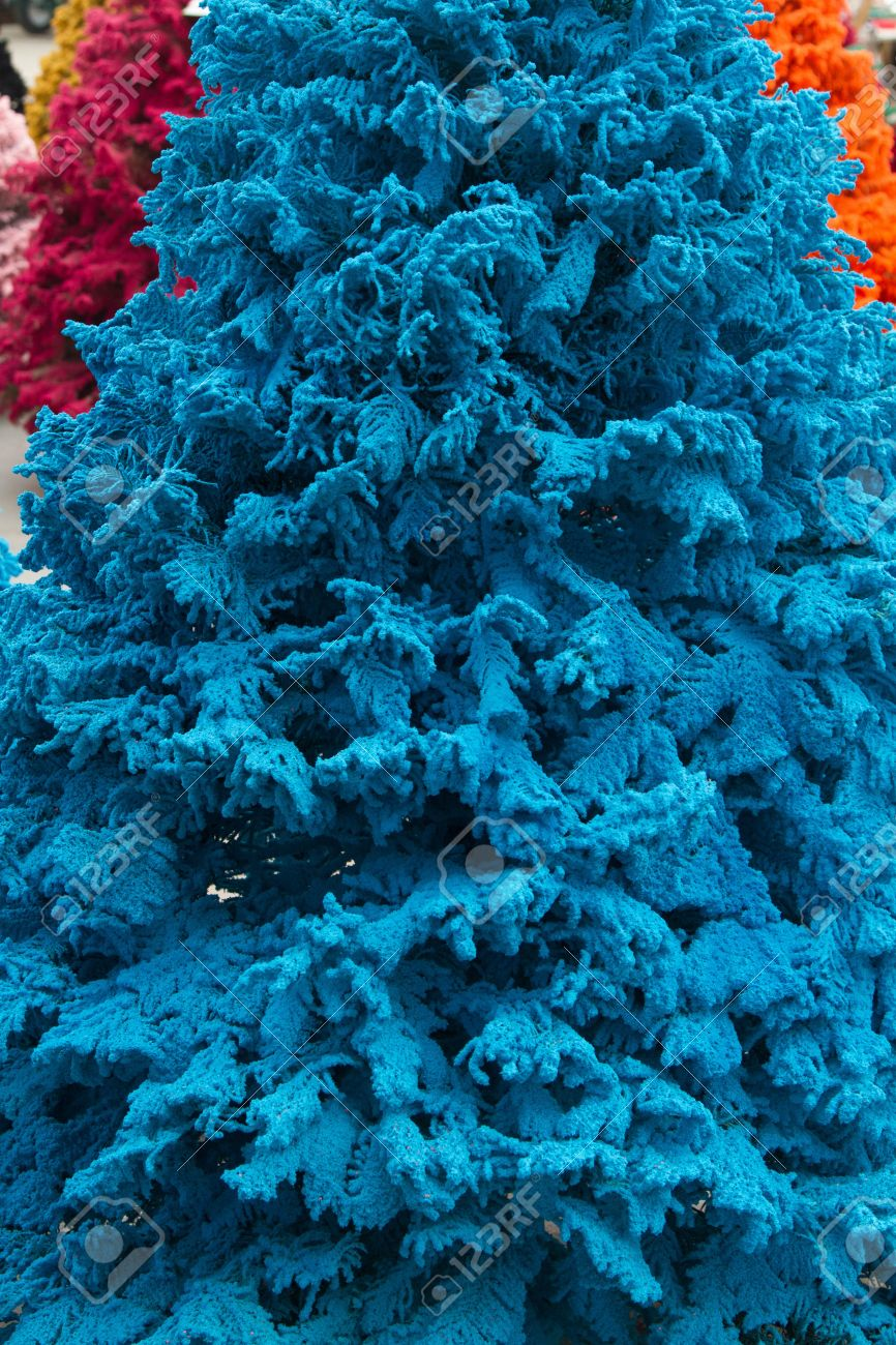 shot of colored christmas trees flocked in blue closeup portrait stock photo - Colored Christmas Trees