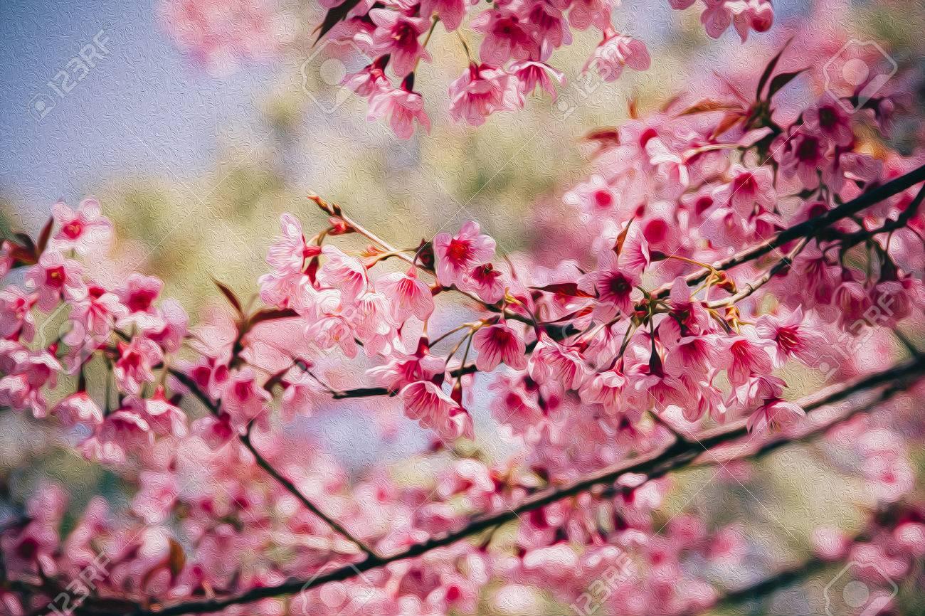 Pink sakura flower wild himalayan cherry blooming prunus pink sakura flower wild himalayan cherry blooming prunus cerasoides oil painting style background dhlflorist Images