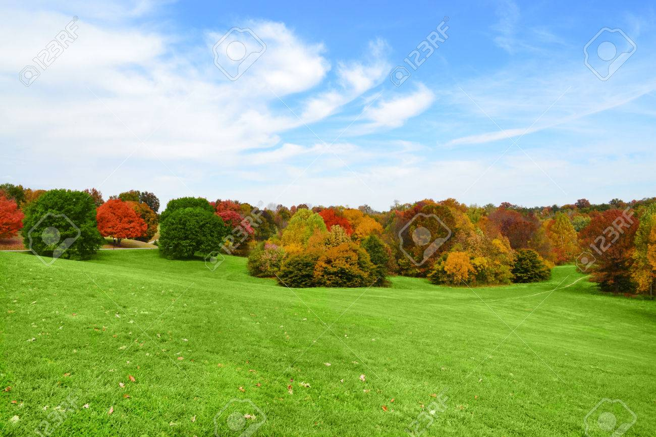 Trees Changing Colors At The Park In The Fall Season Stock Photo ...