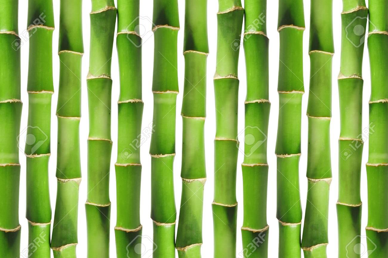 Green bamboo background image Stock Photo - 9081659