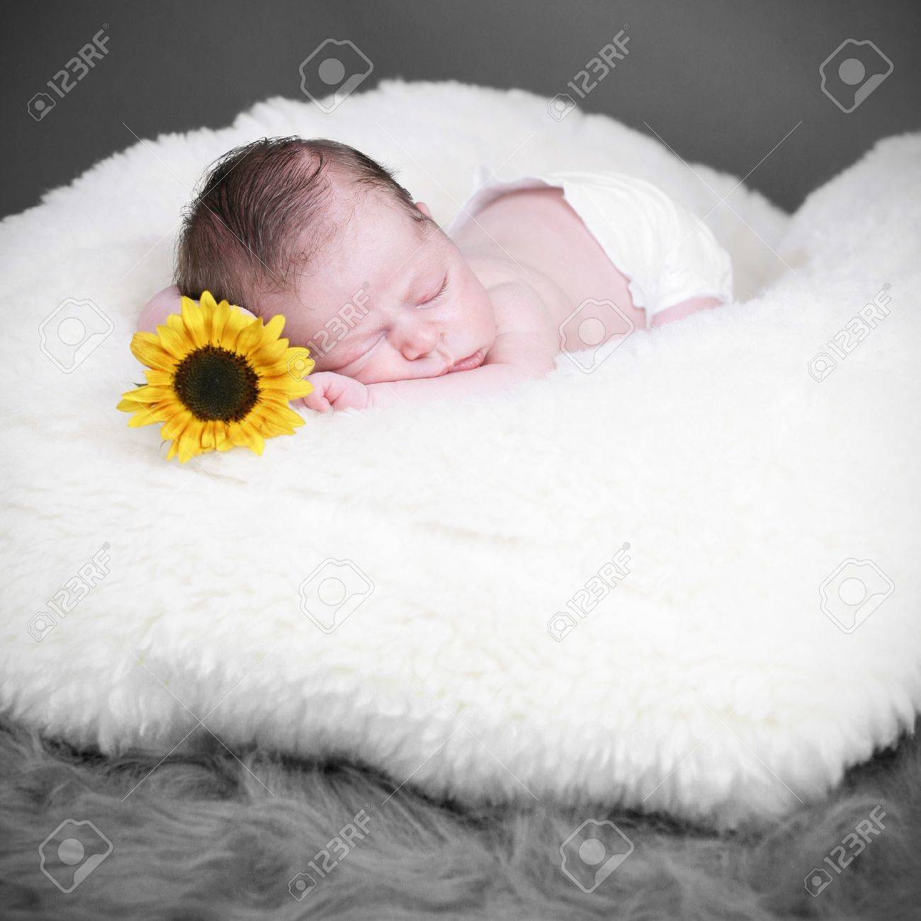 Adorable newborn baby with sunflower Stock Photo - 10448714