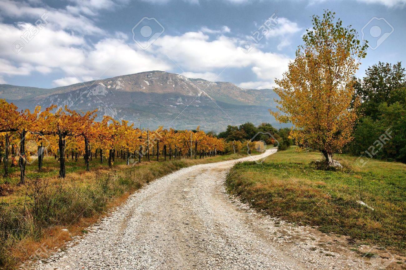Beautiful nature in autumn colors - 15529939