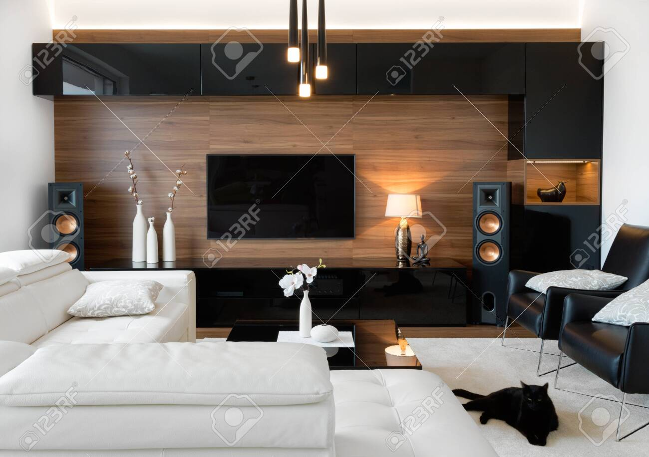 Modern living room interior of real home - 120366765