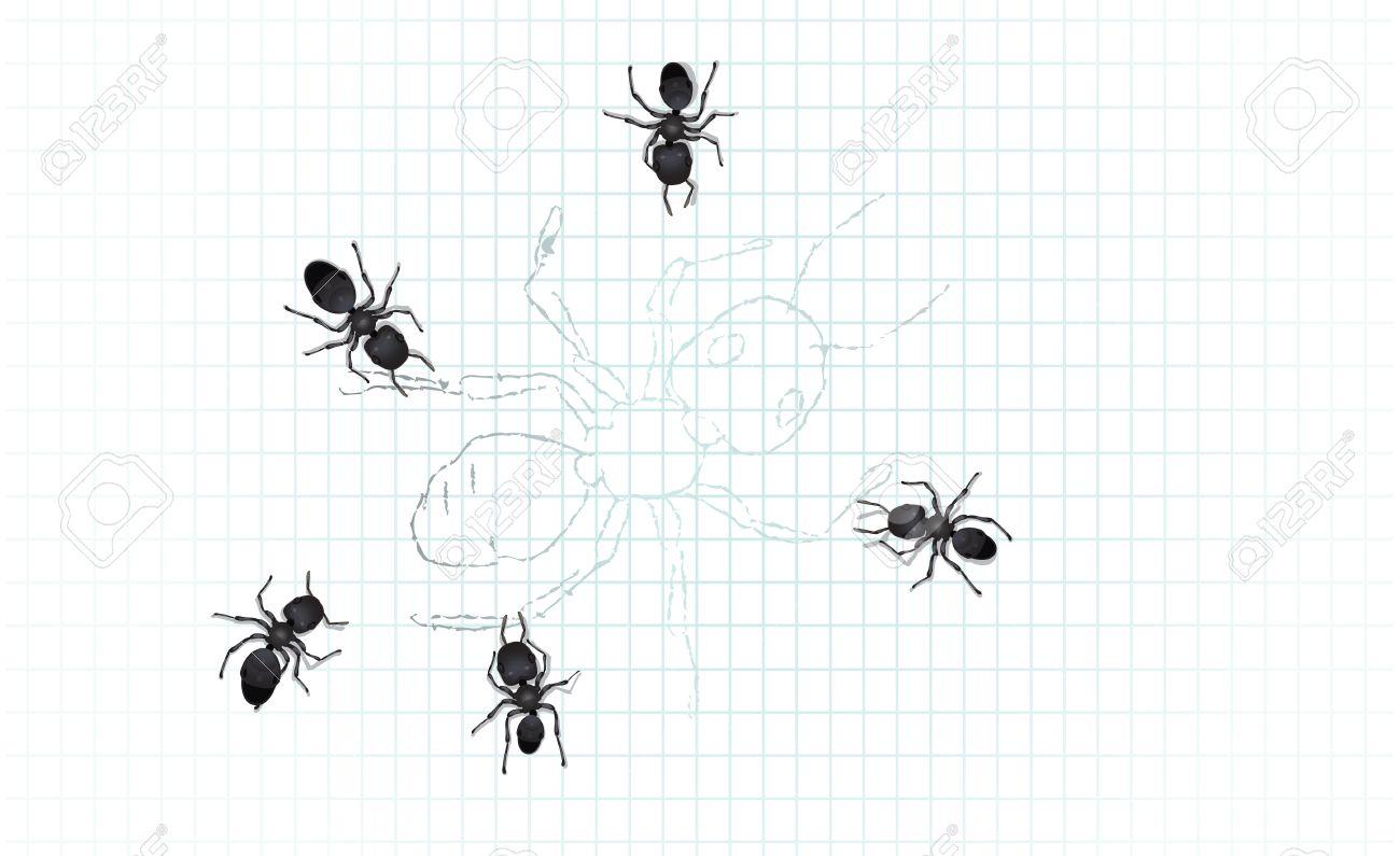 Increíble Hoja Para Colorear Hormiga Bosquejo - Dibujos de Animales ...