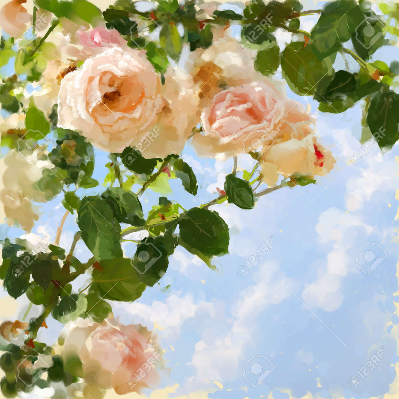 Digital painted picture with rose-tree and sky. Can be used as invitation-card or picture-card background. Stock Photo - 7387783