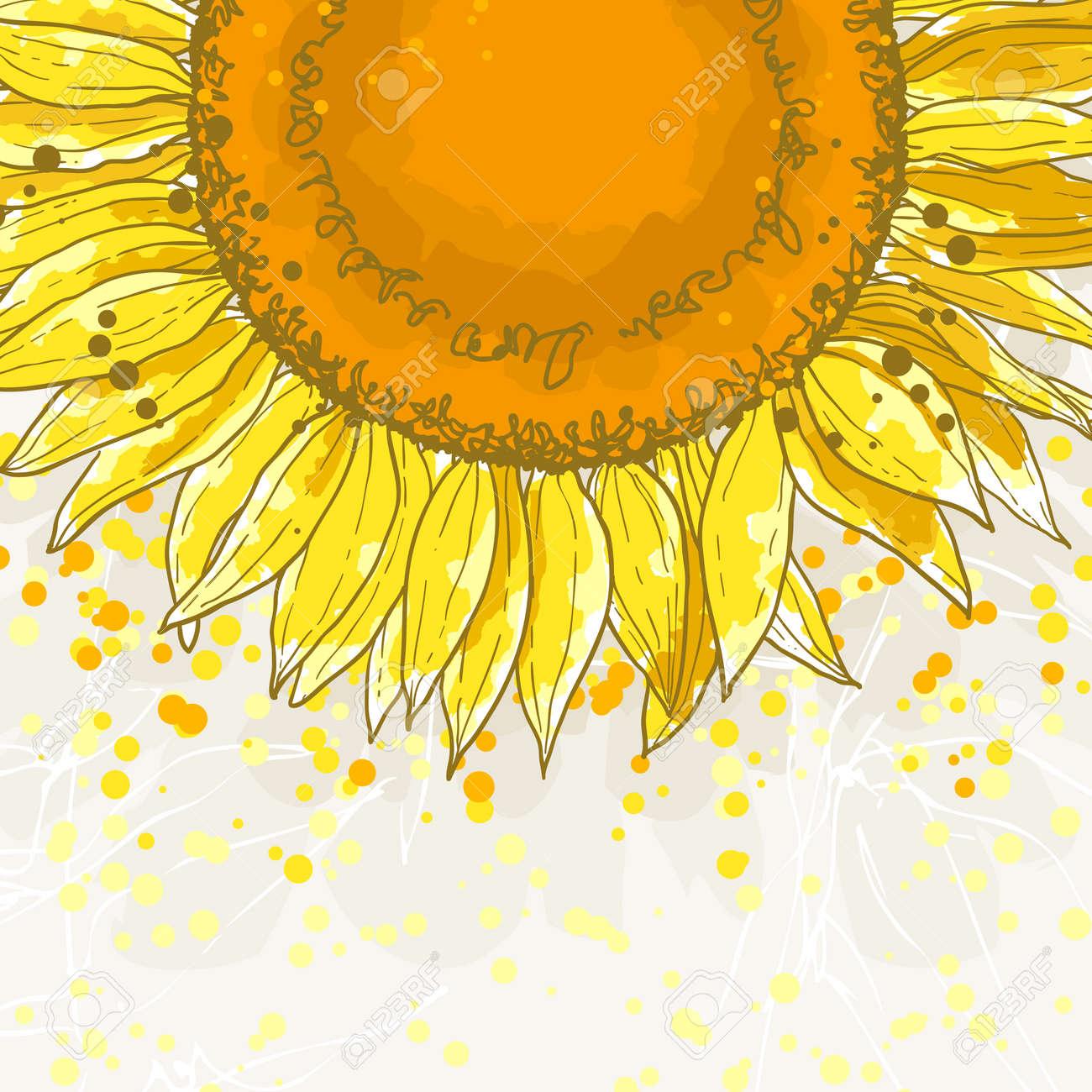Die Kontur Zeichnung Blume Sonnenblume Kann Als Hintergrund Für ... - Einladungskarte Sonnenblume