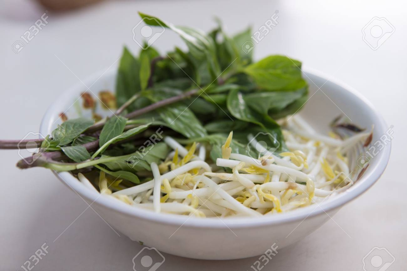 bean sprouts and sweet basil ,side dishes serve with Thai Noodle Stock Photo - 21526458