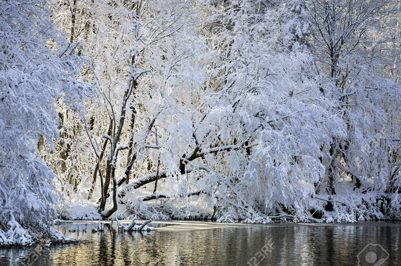 A Lake Hidden Within The Snowy Winter Forest Stock Photo Picture