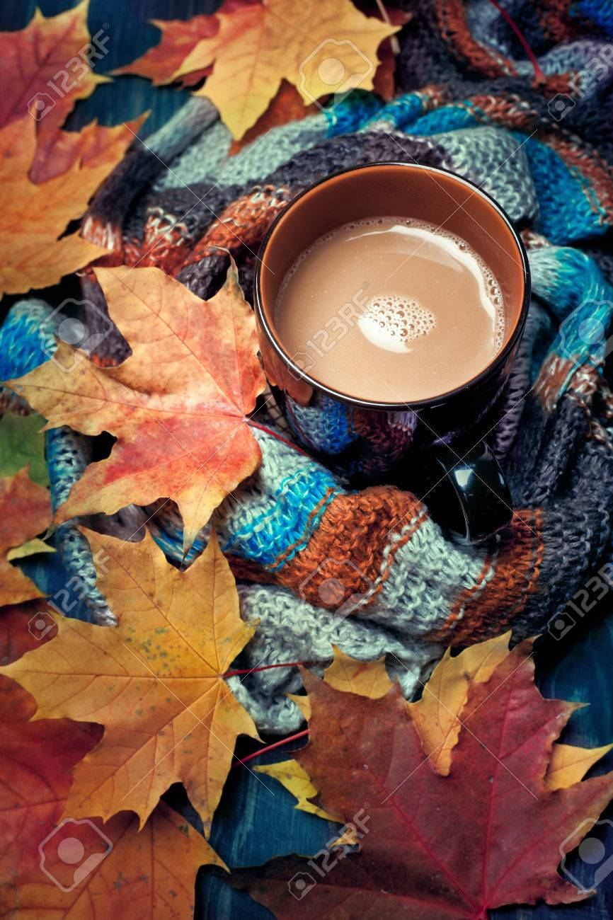 6beebac86c4 Cup of warming coffee or chocolate set with autumn leaves and a warm scarf  Stock Photo