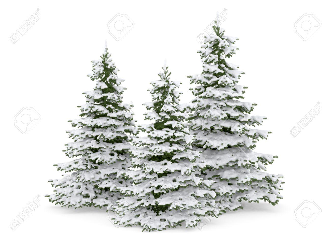 thre christmas tree and snow stock photo 11324640 - Snow Christmas Tree