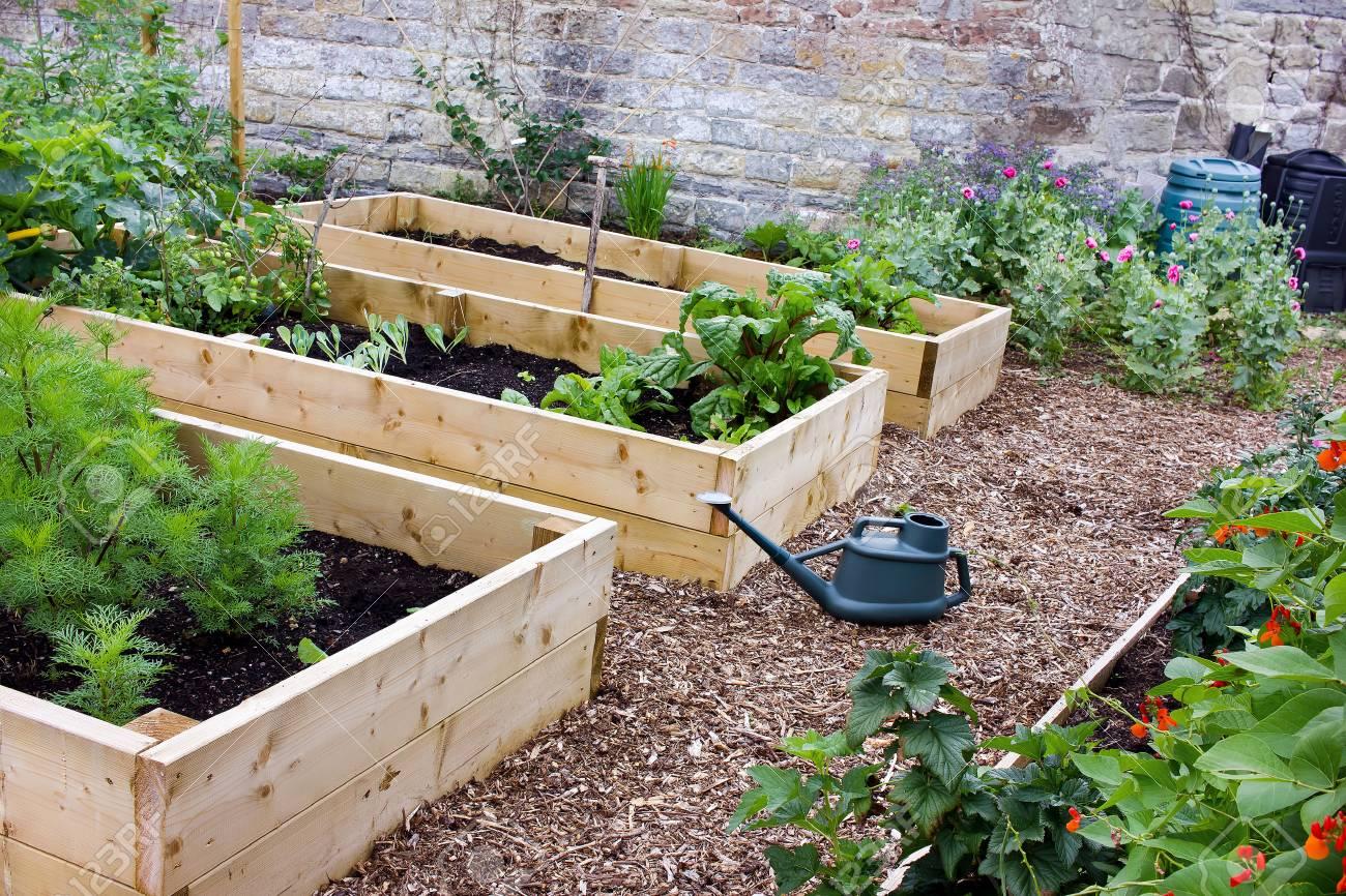 Jardin Rustique De Legumes Et De Fleurs Avec Des Lits Sureleves