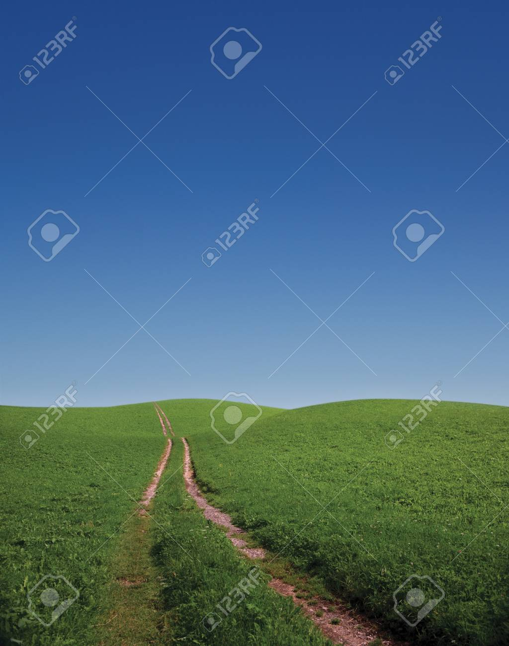 Road going through a green meadow over a crest on the horizon Stock Photo - 7049807