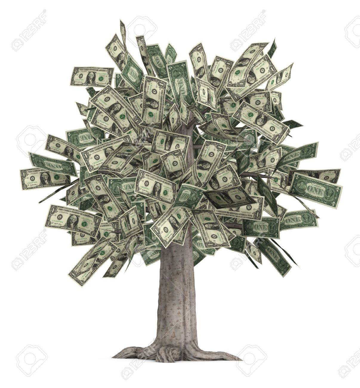 This is a high-resolution 3d render of a rooted tree with a thick stock that is growing currency for it's leaves over a white background. Stock Photo - 7060284