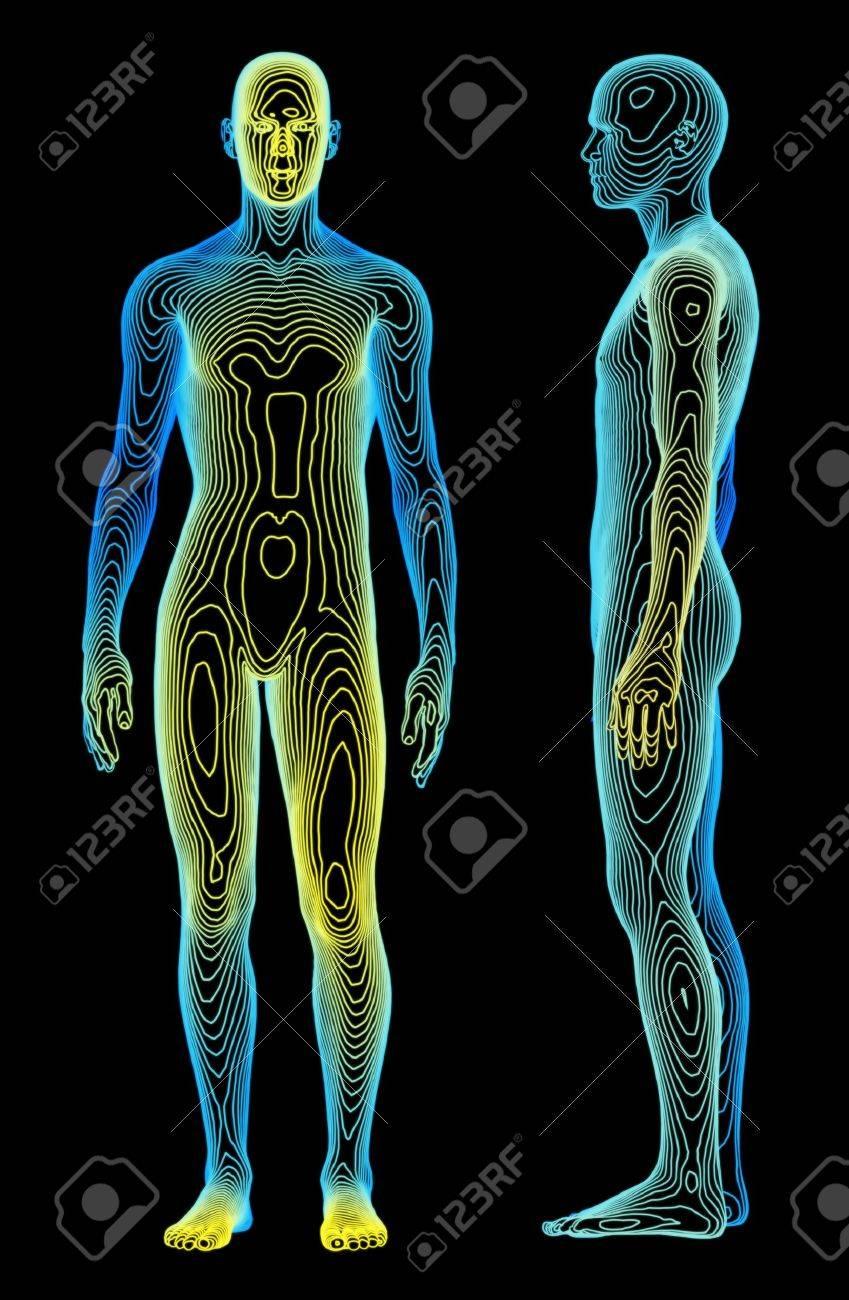 Fein Karte Von Menschlichen Skeletts Ideen - Menschliche Anatomie ...