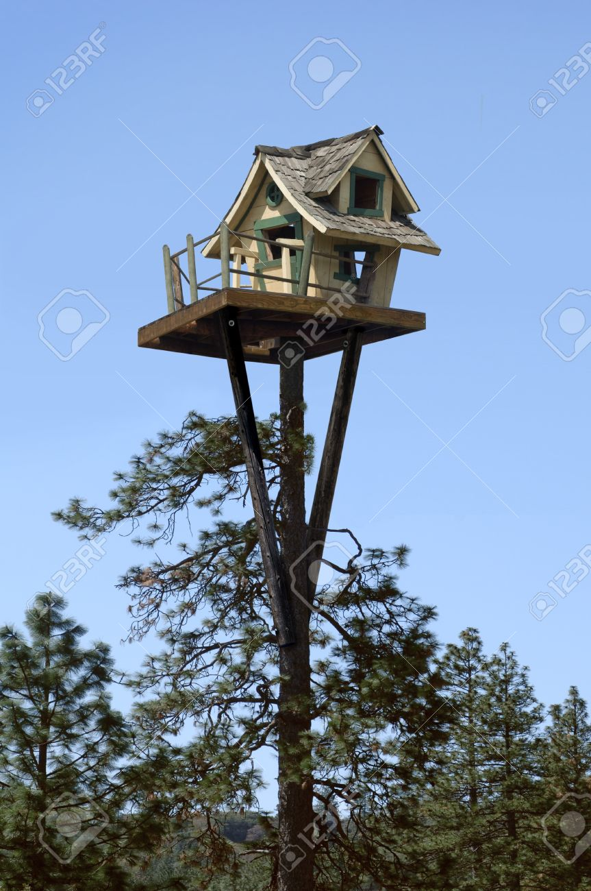 tree house at the top of a ponderosa pine tree stock photo picture rh 123rf com pine tree house sacramento ca pine tree house sacramento ca