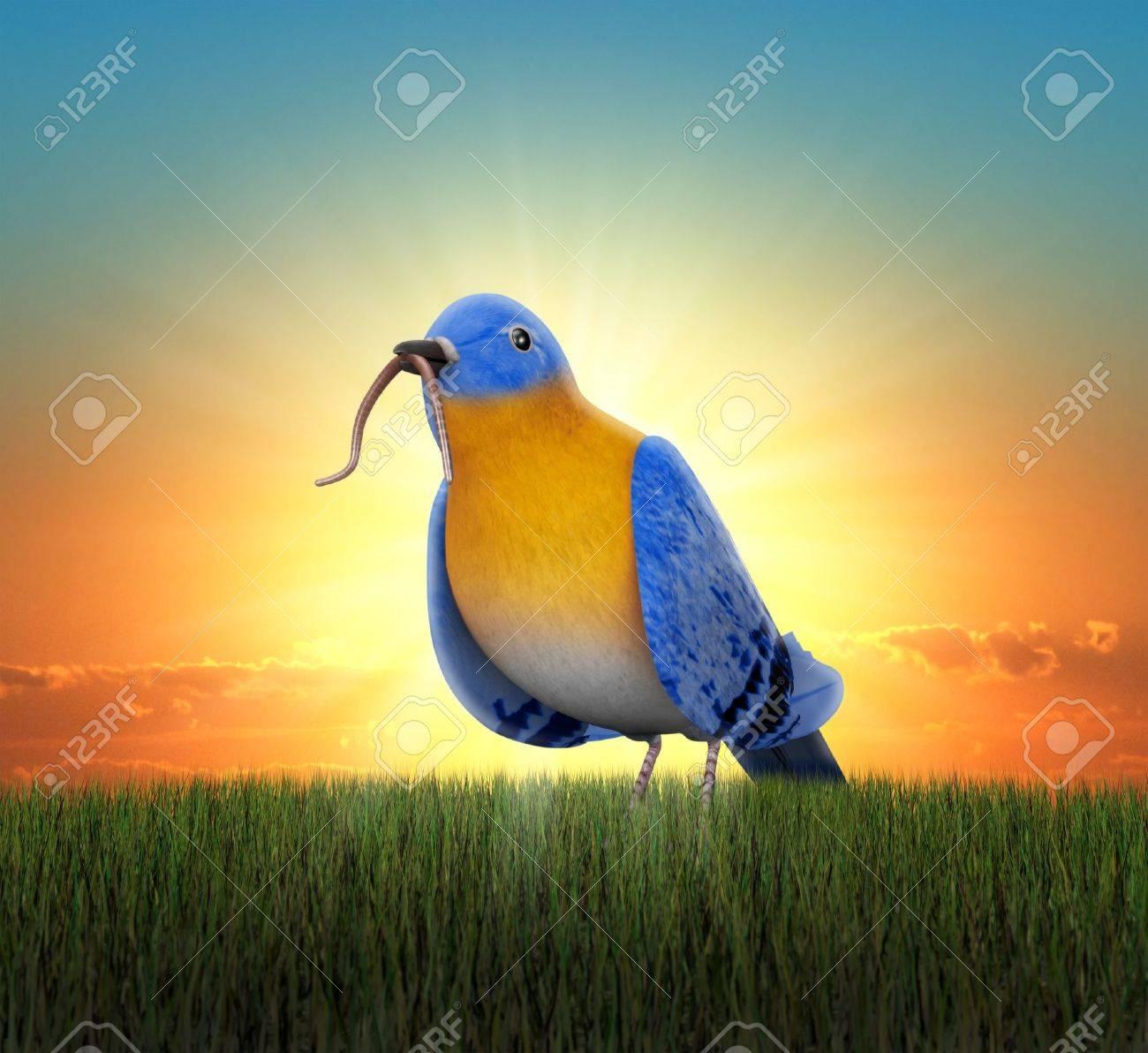 Bluebird standing in green grass, catching tha worm as the sun rises behind him - 16948148