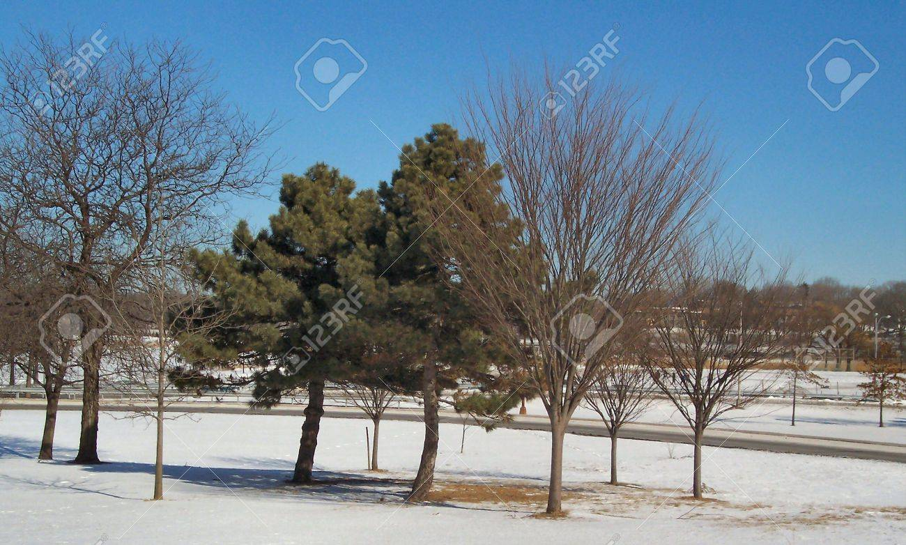 Winter in NYC Stock Photo - 360102