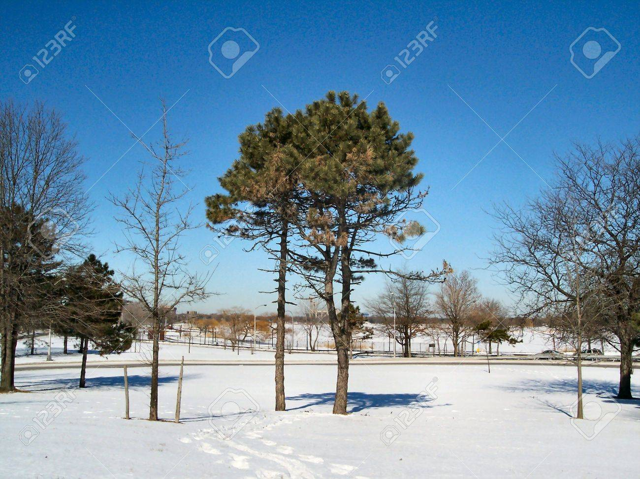 Winter in NYC Stock Photo - 360104