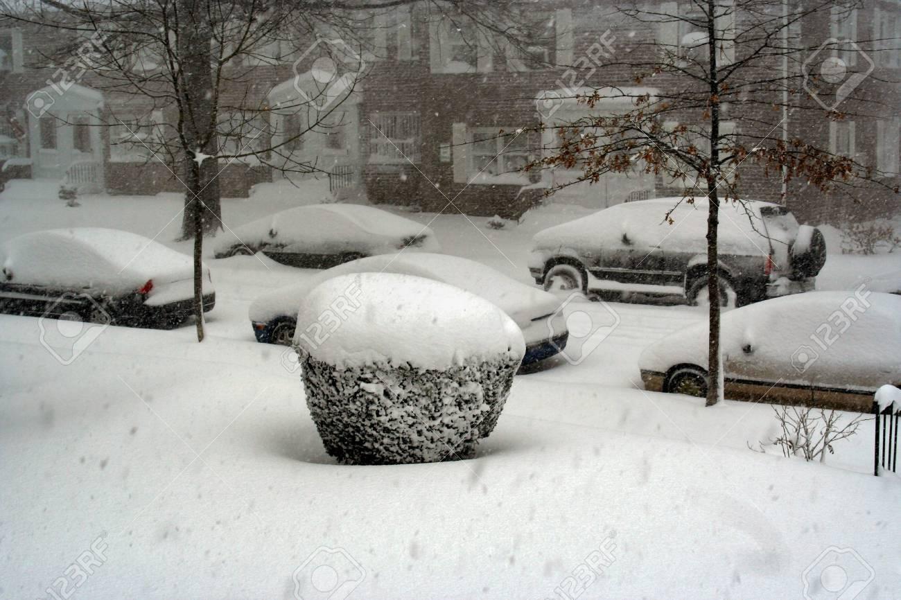 Snow day Stock Photo - 361327
