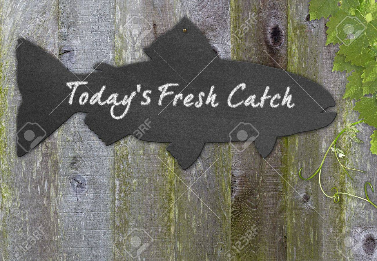 Black Chalkboard Fish  Restaurant Menu Advertising Space For Fresh Seafood Over Distressed Grunge, Vintage, Aged And Green Moss Covered Wood Background Framed With Grape Leaves And Tendrils Stock Photo - 11550394