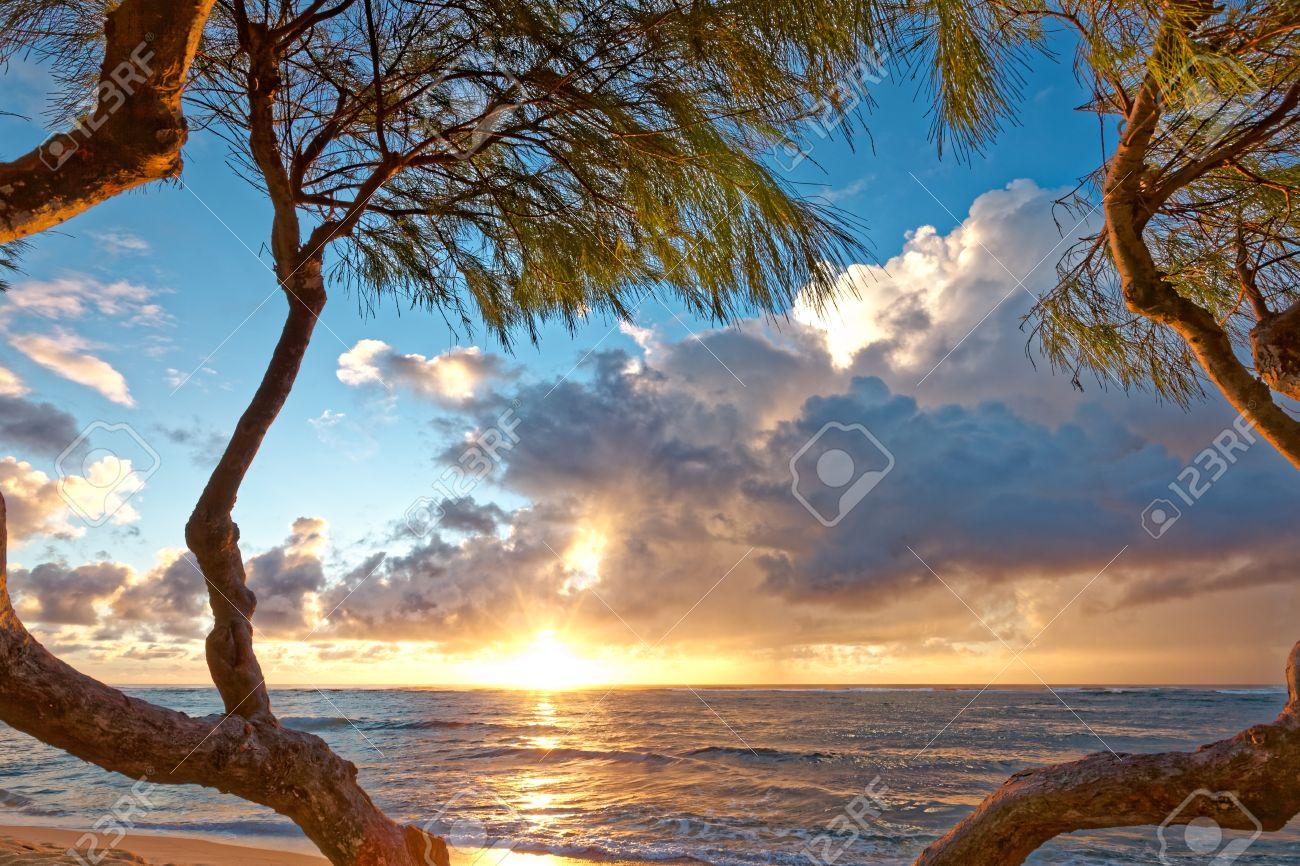 Hermoso Amanecer De La Mañana En Una Playa De Kauai, Hawaii. El Sol ...