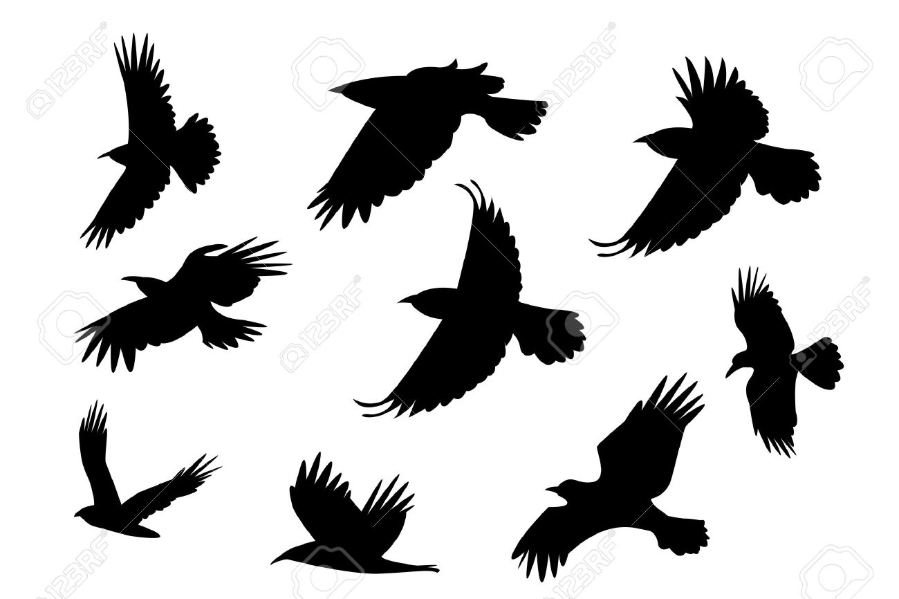 Set Of Silhouette Flying Raven Bird With No Leg Vector Royalty Free Cliparts Vectors And Stock Illustration Image 41992884 New users enjoy 60% off. set of silhouette flying raven bird with no leg vector