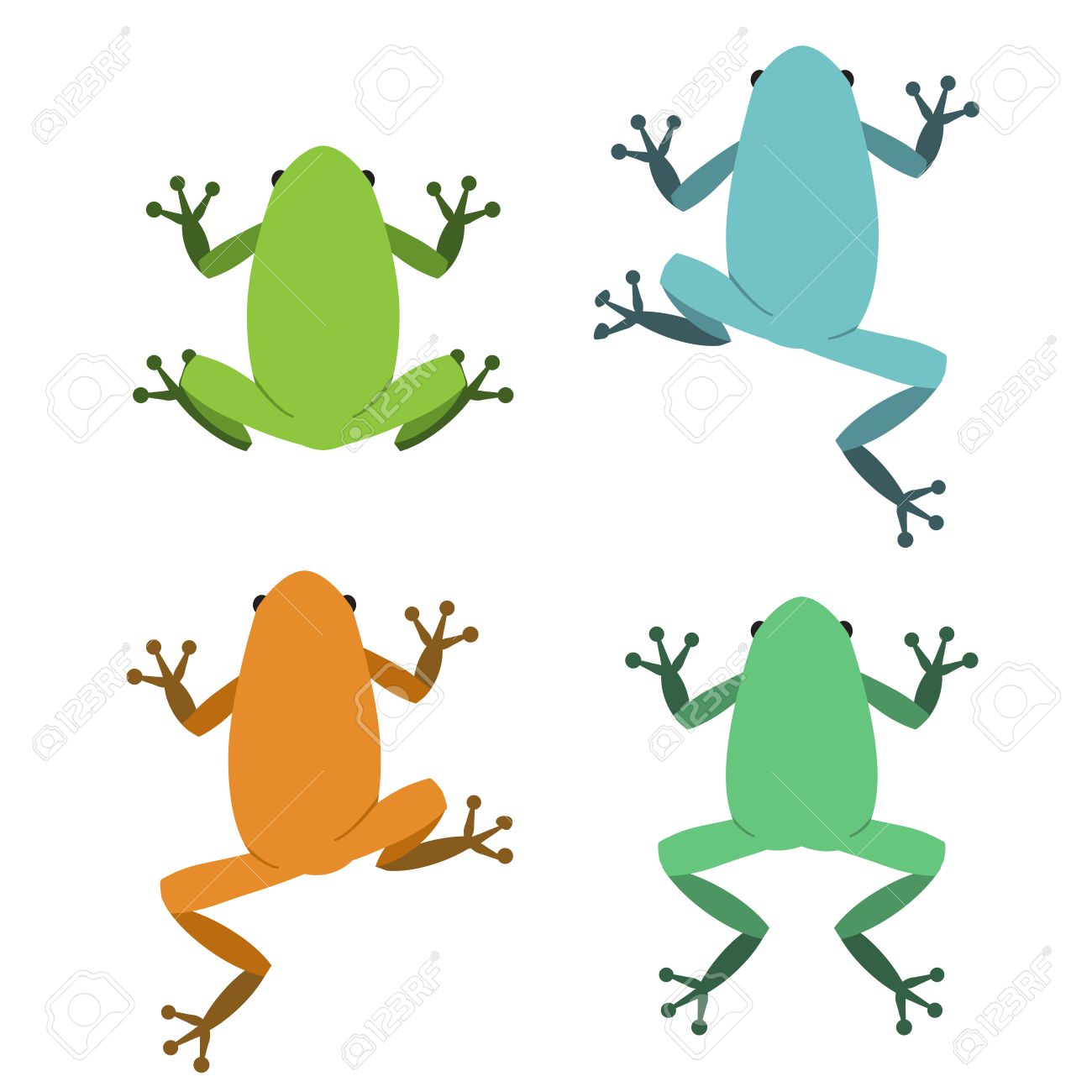 Set of frog in flat style, vector animal - 51248697