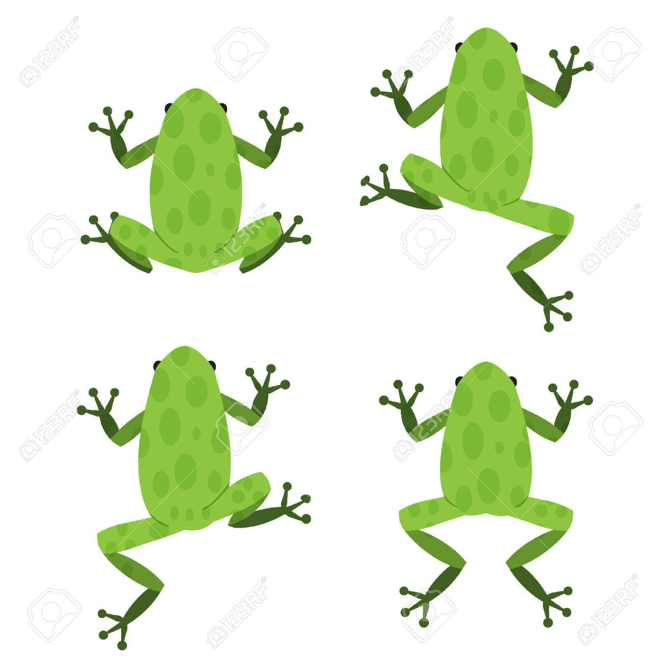 Set of green frog in flat style with pattern, vector - 51248699