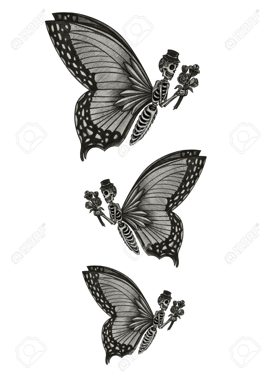 Skull butterfly day of the dead hand pencil drawing on paper stock photo 40393846
