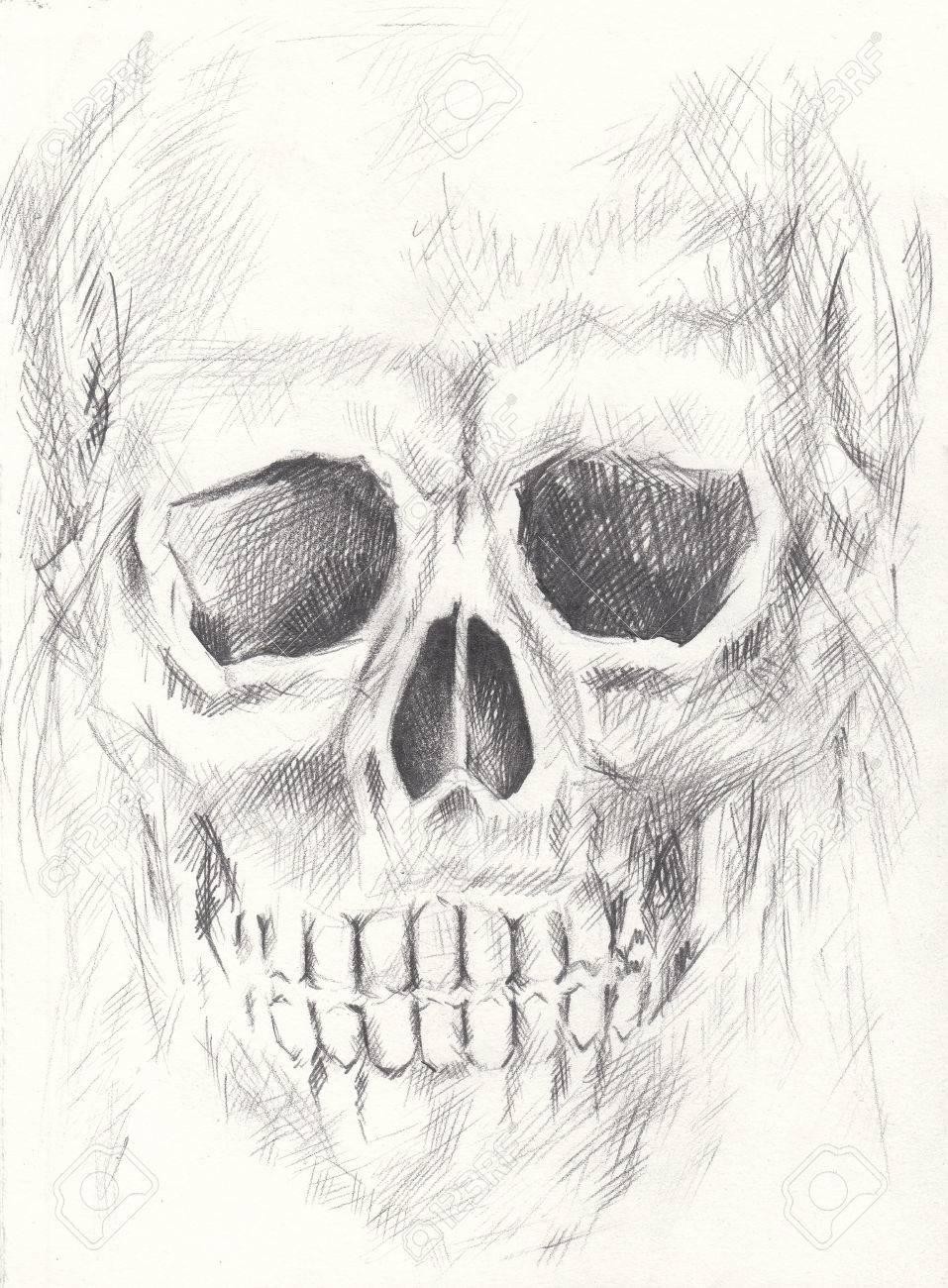 Kunst Schädel.Hand Bleistift Zeichnung Auf Papier. Lizenzfreie Fotos ...