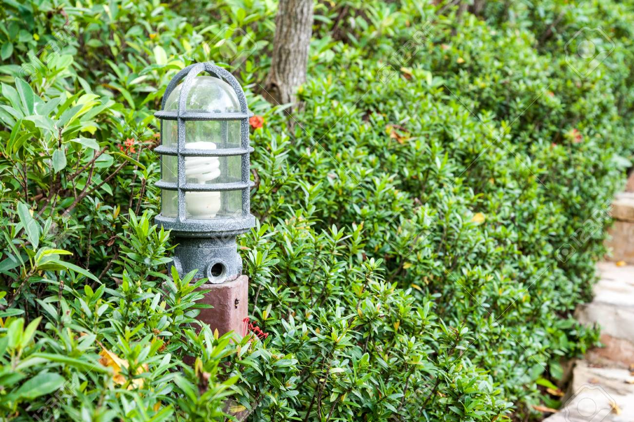 lamp in garden with leaves covered Stock Photo - 17638464