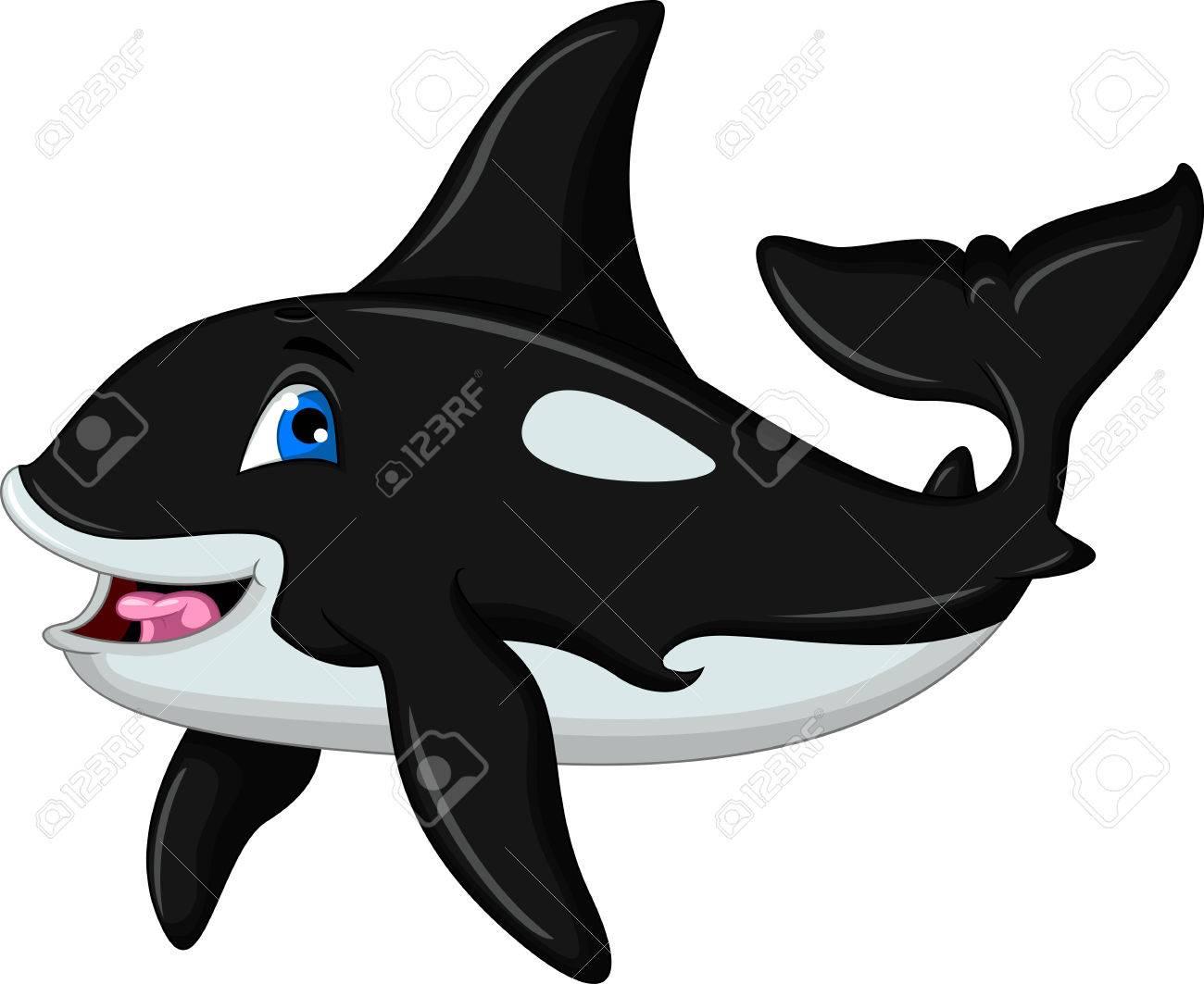 Orca Whale Cartoon Vector - killer whale cartoon