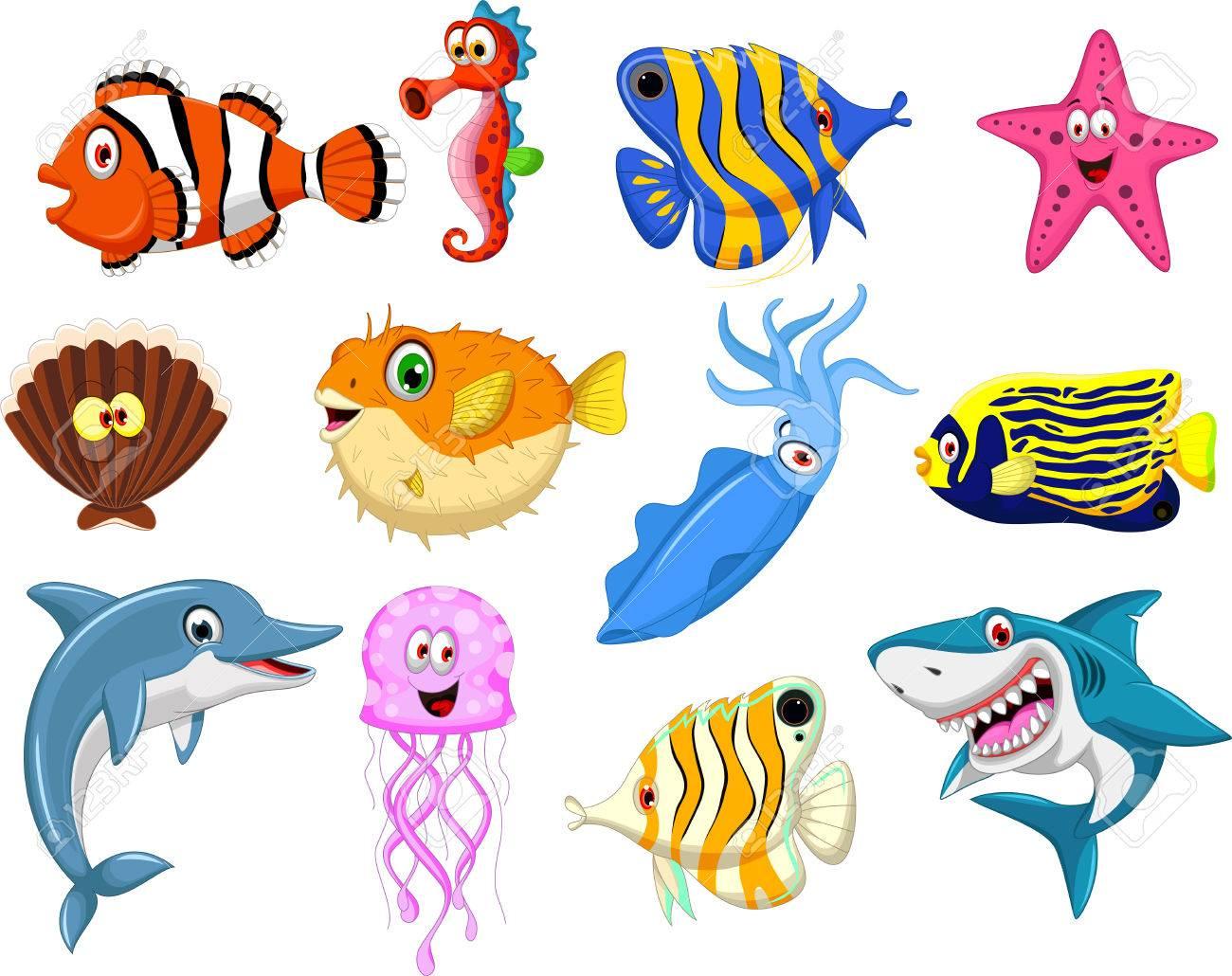 sea life cartoon collection - 38015212