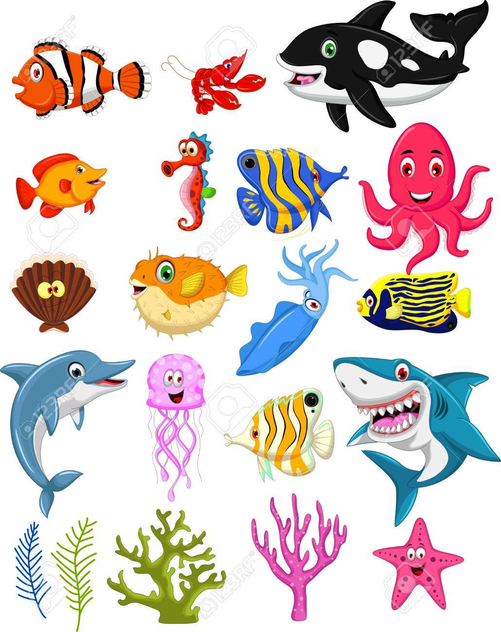 sea life cartoon collection - 38015461