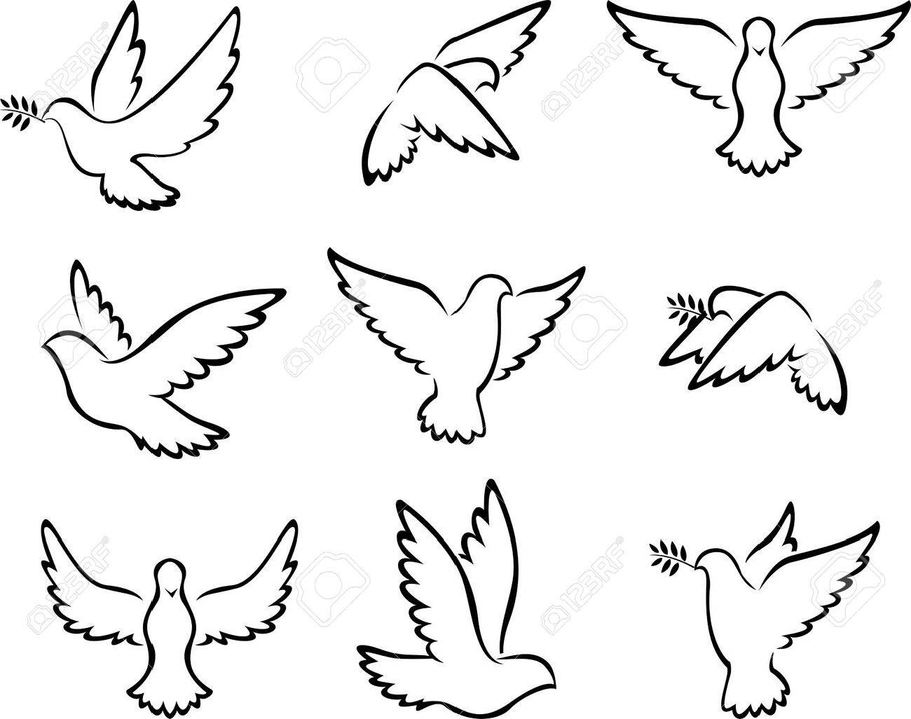 collection of Dove birds for peace concept and wedding design - 41506564