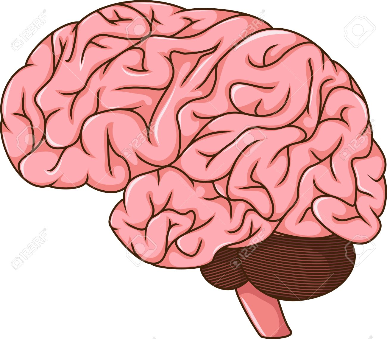 Cartoon picture of a human brain