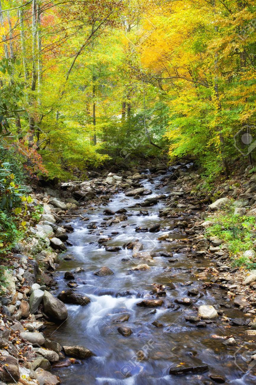 Creek beautiful rare photo