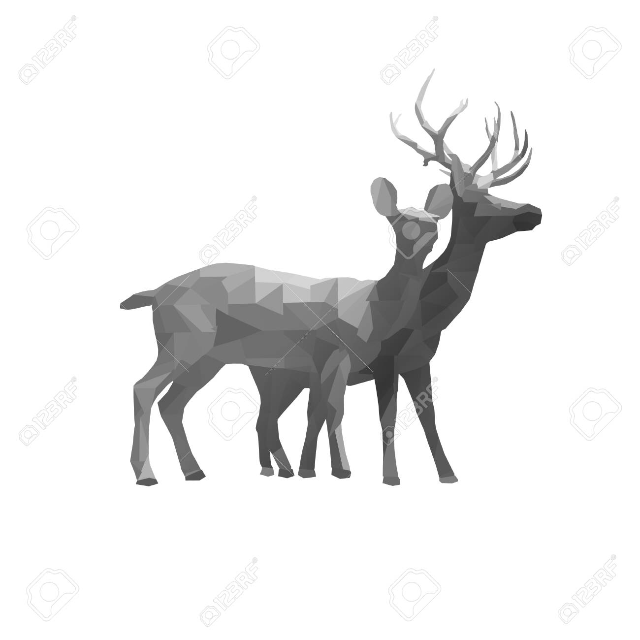 polygon triangle couple deer buck and doe illustration low poly