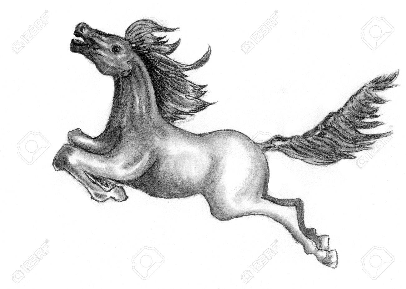 A Horse Sketch On Paper Stock Photo Picture And Royalty Free Image Image 27460578